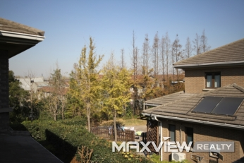 Tiziano Villa   |   提香别墅 4bedroom 400sqm ¥50,000 PDV01245
