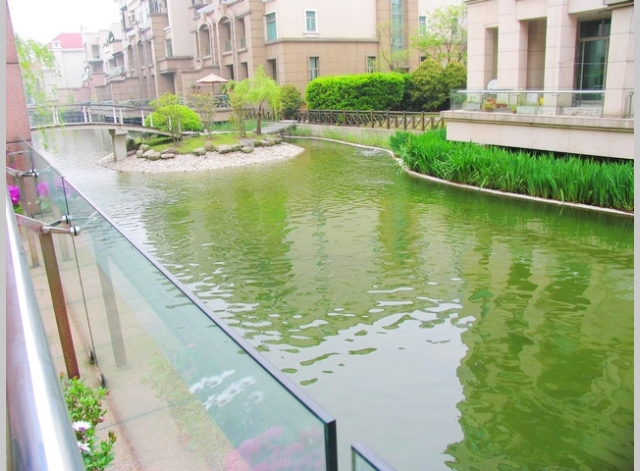 Shimao Lakeside Garden   |    世茂湖滨花园 4bedroom 293sqm ¥38,000 SH004612