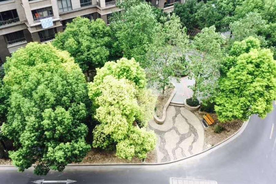 ZiXun Garden