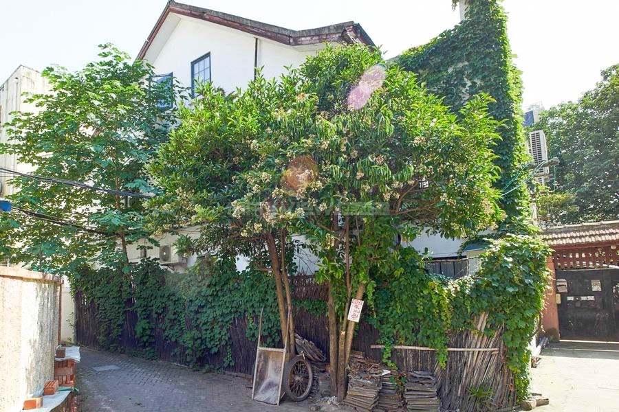 Old Garden House On Tai AN Road 4bedroom 160sqm ¥55,000 PRS2753